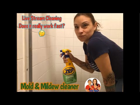 Download LIVE STREAM cleaning! Does Zep Mold & Mildew Stain Remover actually work in just a few minutes?