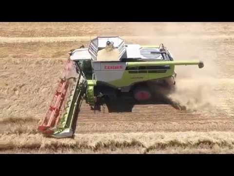 Barley Harvest at Gleninda Pty Ltd in Australia