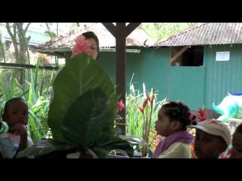 Le jardin de valombreuse guadeloupe petit bourg youtube - Dutronc petit jardin youtube limoges ...
