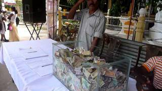 Sri Lanka,ශ්රී ලංකා,Ceylon,Saving Cows from murder (01)
