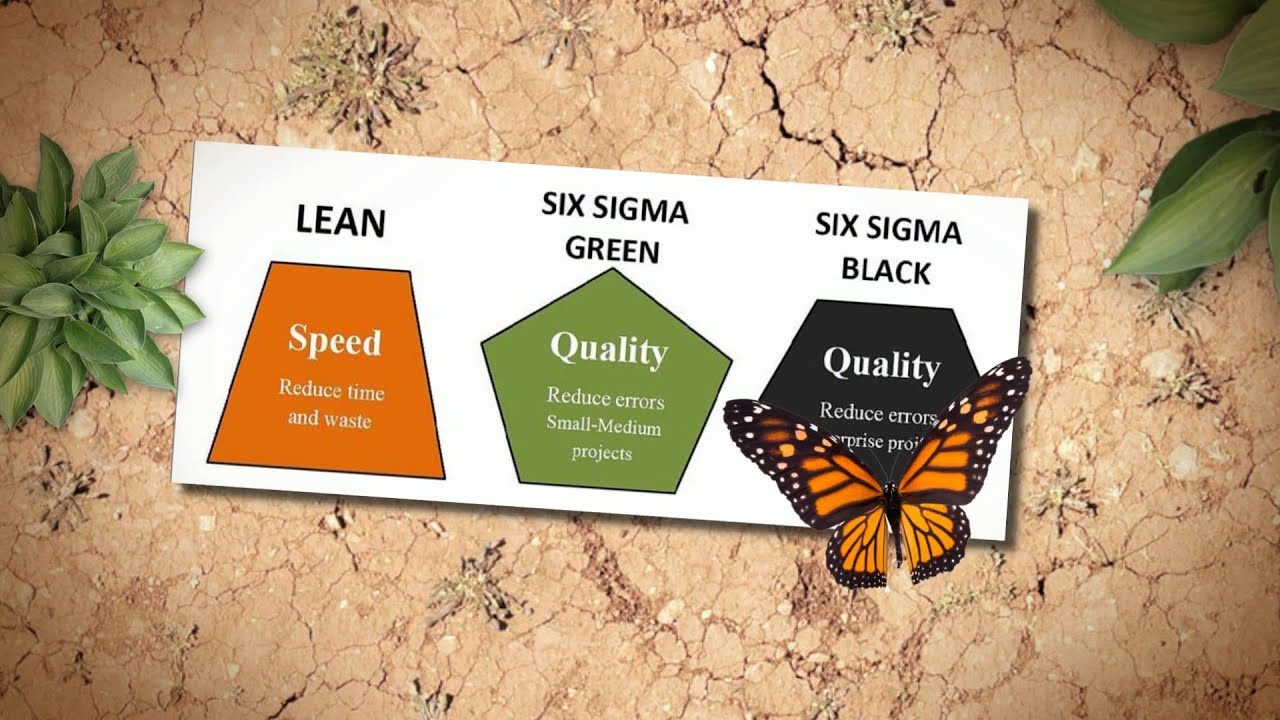 Benefits of lean six sigma green belt certification youtube benefits of lean six sigma green belt certification xflitez Choice Image
