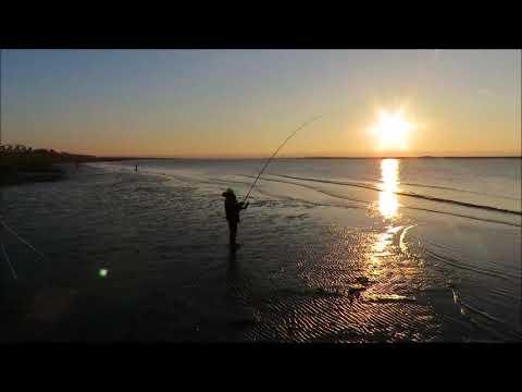 Fishing Competition In Burnham-On-Sea (Burnham-On-Sea.com)