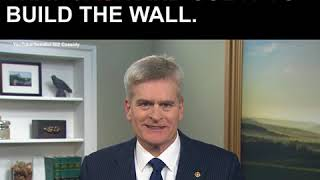 Senator Bill Cassidy: Build the Wall — and Make the Cartels Pay for It