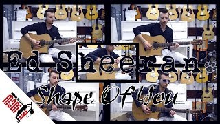 show MONICA cover - Ed Sheeran - Shape Of You [Acoustic]