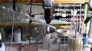 Разработка нового вида биодизеля(, 2012-05-07T04:42:29.000Z)