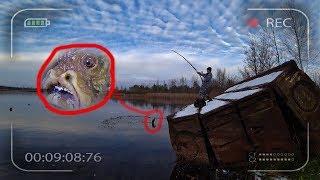 Словили мутанта в реке Припять. Пошли на рыбалку в Чернобыле. Нас преследует маньяк