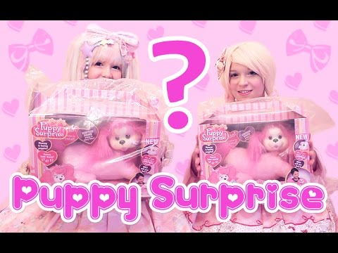Quest for PUPPY SURPRISE! - and kawaii sleepover