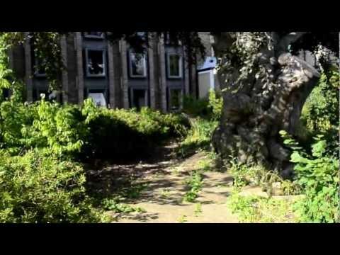 Darwin College Garden Tour