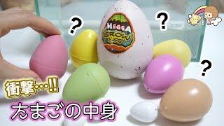 たまごの中身が衝撃すぎた、、、色んな卵のおもちゃ開封してみた!【 こうじょうちょー  】