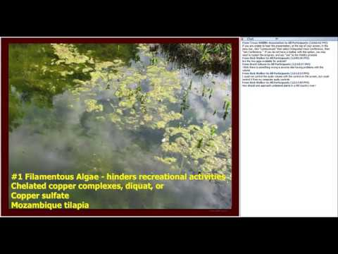 Aquatic Vegetation Identification and Control Options - Wildlife for Lunch - February 2017