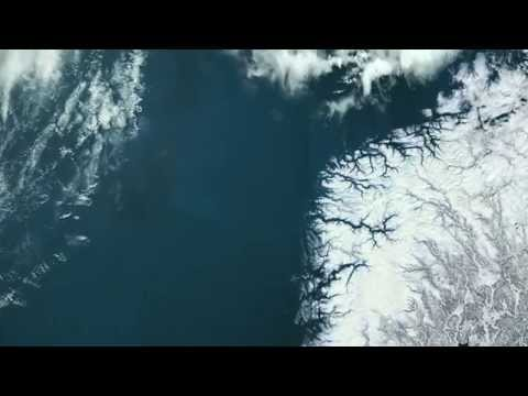 Phytoplankton - excerpt from Planet Ocean the movie