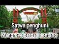 Hewan Penghuni Mangrove Berbas Bontang  Mp3 - Mp4 Download