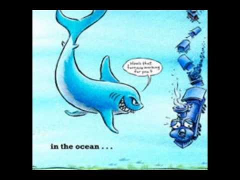 Shark vs Train Book Trailer