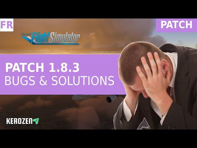 BUGS & SOLUTIONS PATCH UPDATE 1.8.3 FS 2020 Ne paniquez pas