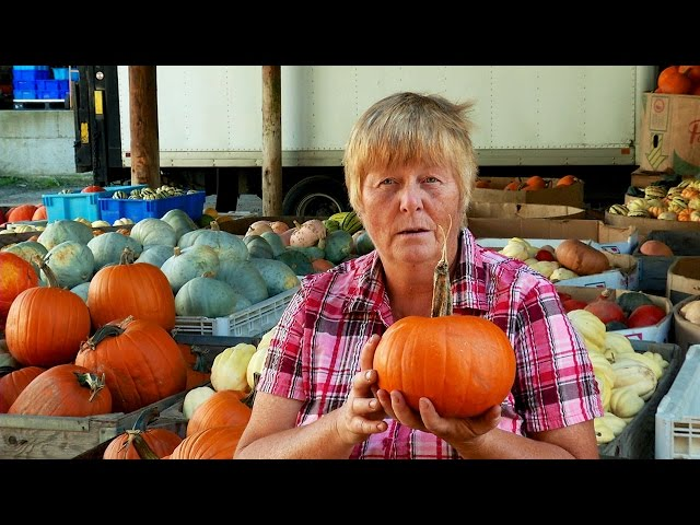 The Remarkable World of Winter Squash and Pumpkins