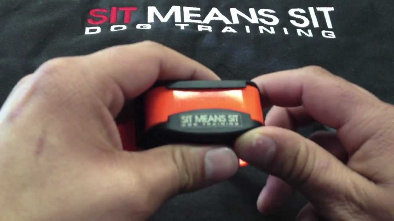 Changing Modes On The Sit Means Sit Collar Tutorial Series Youtube