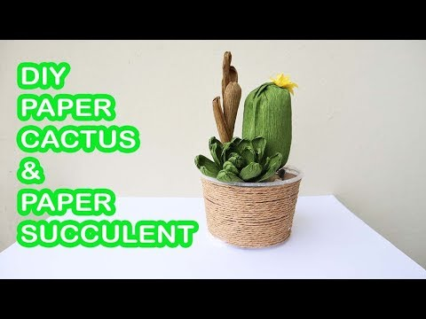 DIY Paper Cactus & Paper Succulents/ How To Make  Cactus & Succulents Plant With Crepe Paper