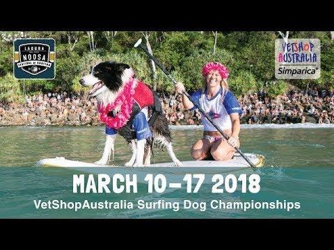 Surfing Dog Championships 2018 Teaser
