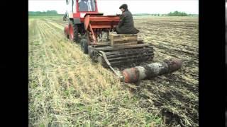 видео Выращивание однолетних трав