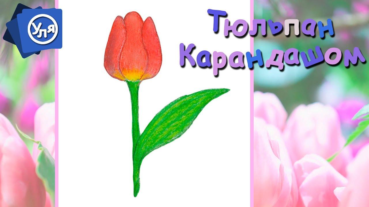 Как нарисовать открытку с цветами 8 марта