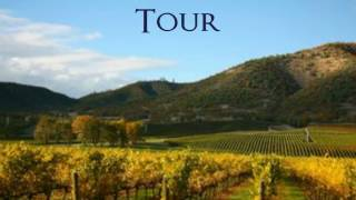 Napa Valley Limousine  Service & Tours in Napa Valley
