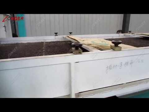 Sweet Buckwheat Hulling Machine From LONGER Machinery.
