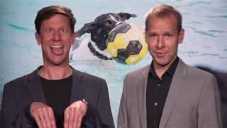 Nacken & Thun – Hundeschwimmen im Freibad Loßburg!