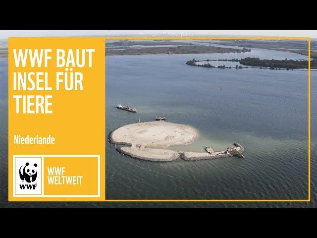 Niederlande: WWF baut Insel in der Nordsee zum Schutz der Tiere | WWF weltweit | WWF Deutschland