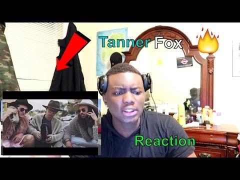Tanner fox/lil fox - noise complaints (official music video) Reaction