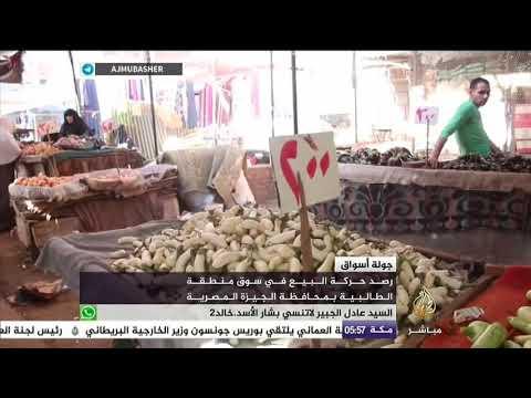 b92f45044 حركة البيع في سوق محافظة الجيزة