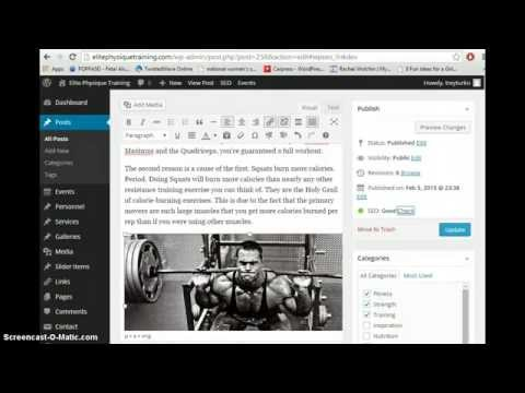 How To SEO Your Blog Post With WP SEO by Yoast
