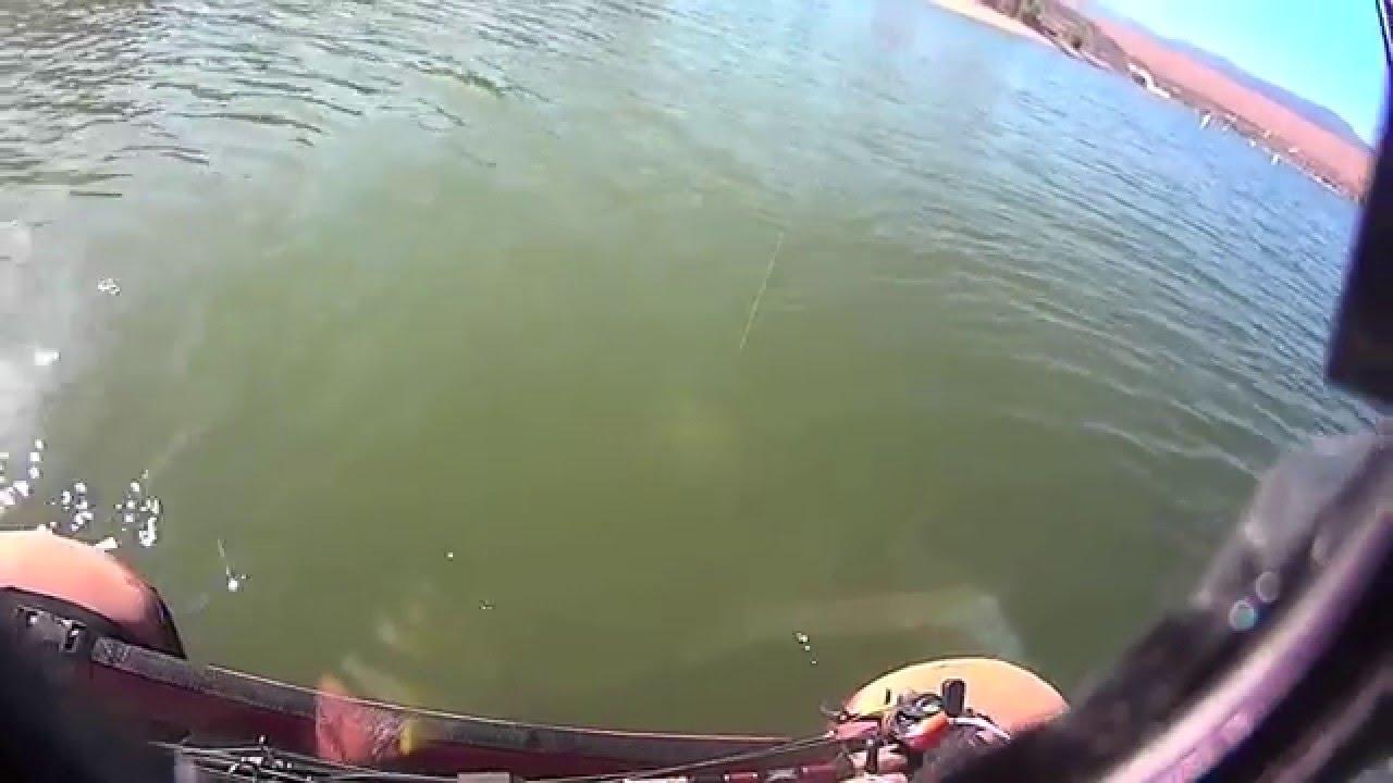 Castaic lake fishing largemouth bass attack alabama tide for Castaic fishing report