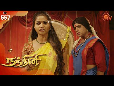 Nandhini - நந்தினி   Episode 557   Sun TV Serial   Super Hit Tamil Serial