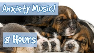 SLEEP MUSIC FOR ANXIOUS DOGS - 8 Hour Playlist to Relax Nervous Dogs and Puppies with Anxiety 🐶 💤
