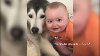 Best Instagram Videos Compilation December 2019 - Cute Baby and Dog