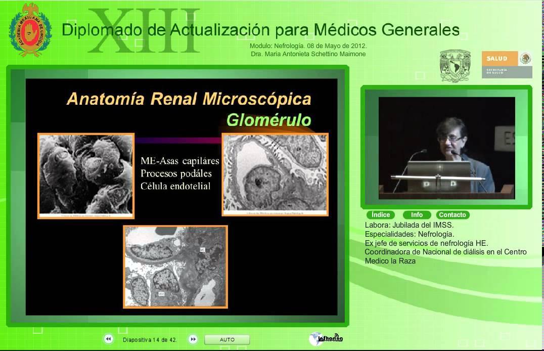 Anatomía y fisiología renal-Dra. Maria Antonieta Schettino Maimone ...