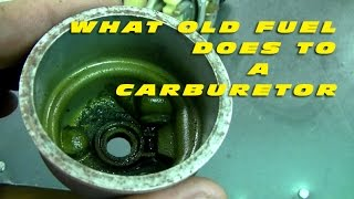 What Old Fuel Does To A Carburetor!