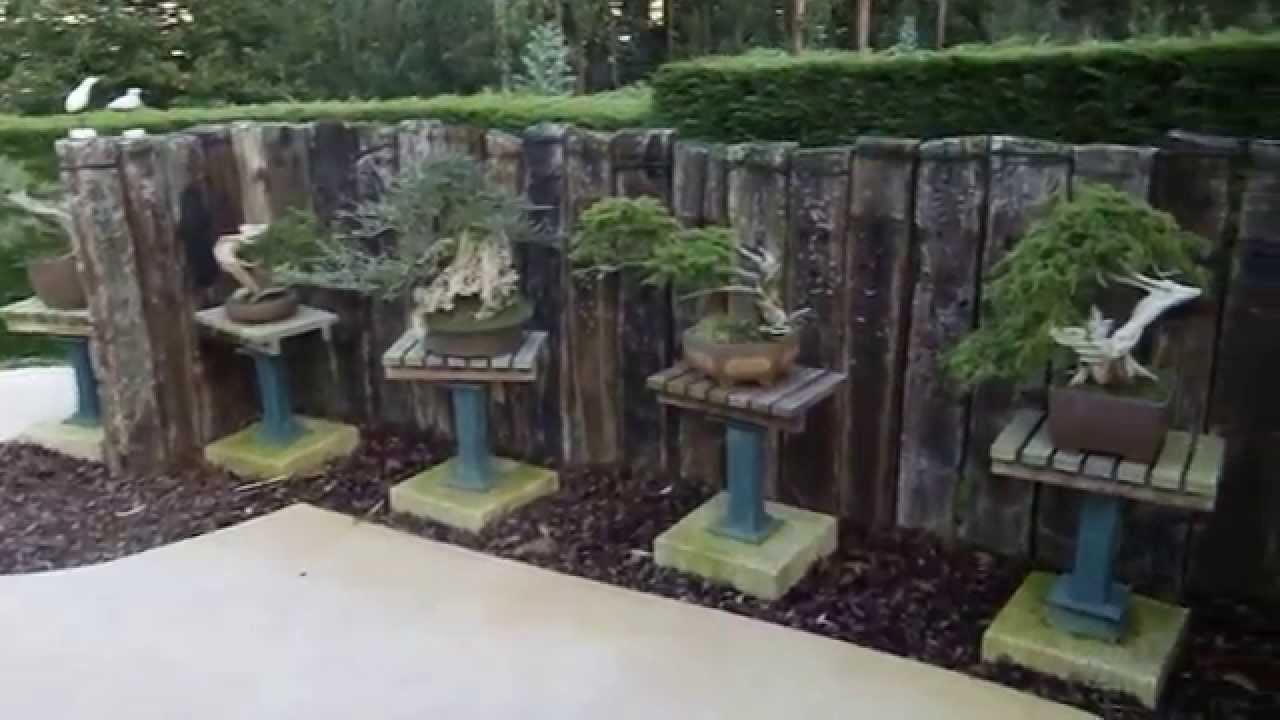 Visita al jard n de bonsai de jorge campos tercera parte youtube Jardin japonais bonsai