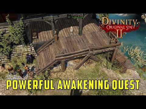 divinity original sin 2 - Was I supposed to perform the