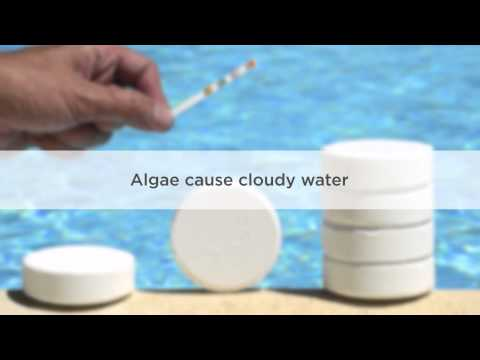 Cloudy Pool Water: Causes And Treatment