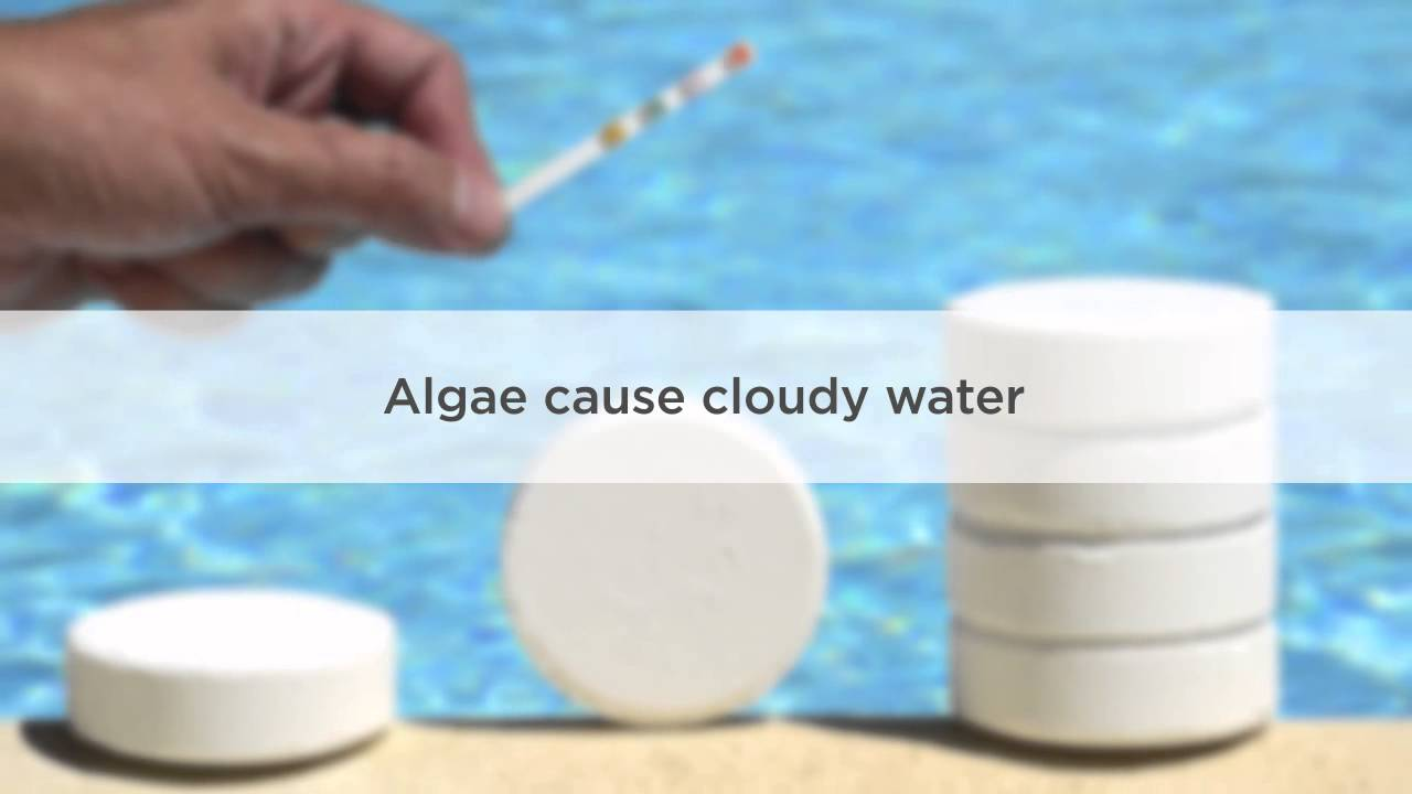 Cloudy Pool Water Causes And Treatment Youtube