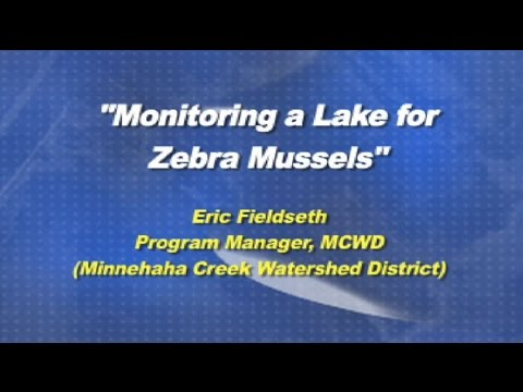 Monitoring a Lake for Zebra Mussels