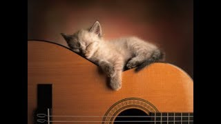 🐱 💤 Музыка для кошек и котов! Успокойте ваших кошек музыкой, помогите котам спать!