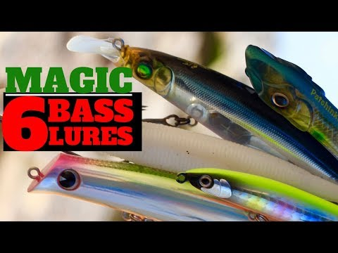6 Must Have Bass Lures For Sea Fishing