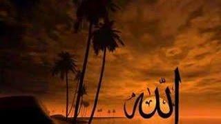 Gambar cover Zikr   Ya Rahim Ya Rahman