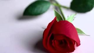 En Güzel Ilahil Mehmet Emin Ay Beyaz Dilekce Ilahisi