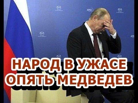 Картинки по запросу медведев рулит картинки