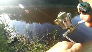 Ловля хищника на лесных озерах Калининградской области