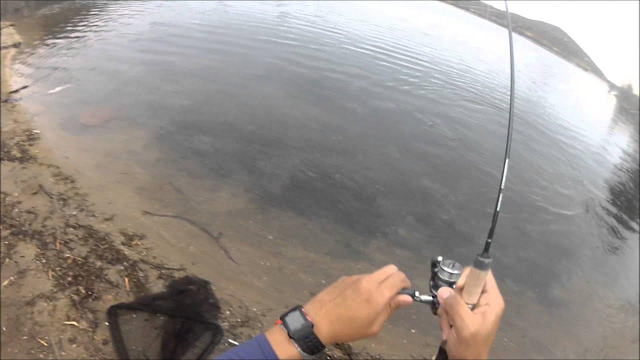 Lake poway trout fishing 2013 youtube for Lake poway fishing