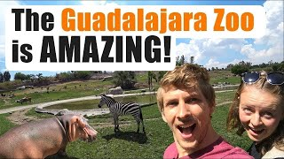 #102. The Guadalajara Zoo is Incredible!!
